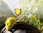 Armenian Autumn Holidays - National Holiday of Wine in Armenia