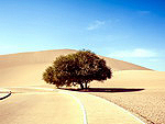 Landscapes of Dunhuang desert