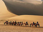 Tourists ride camels across the Dunhuang desert, China