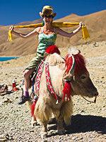 A tourist rides a yak, Tibet