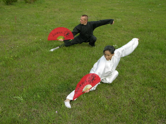 the chinese traditions of kung fu