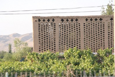 Buildings for drying raisins in Grape valley, Turpan
