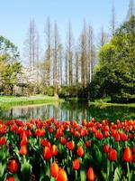 Taiziwan - Park in Hangzhou, China