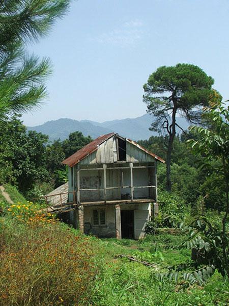 Махинджаури зеленый мыс и цихисдзири