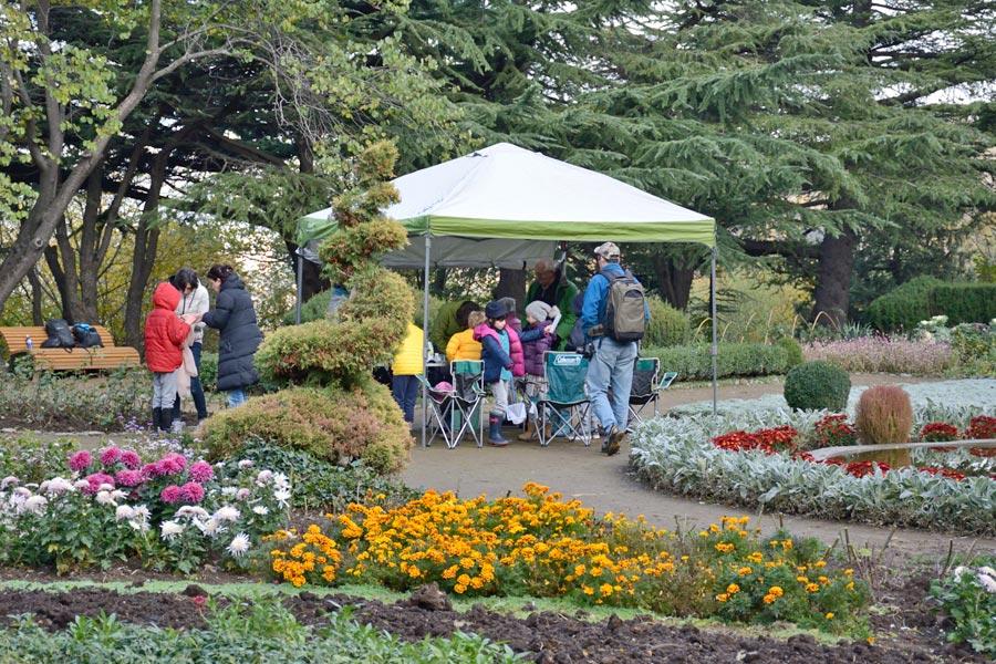 Tbilisi Botanical Garden Garden Ftempo