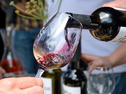 Georgia Wine Tour