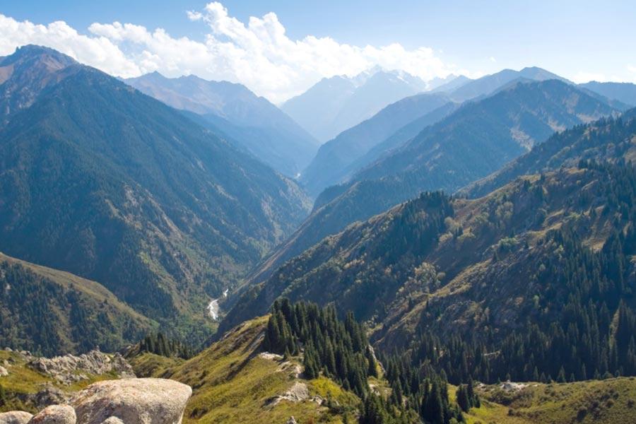 Our work to protect Kazakhstan's biodiversity