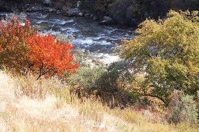 Природа южного Бишкека