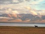 Кыргызстан: летнее пастбище - жайлоо