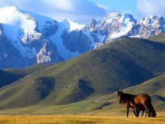 Kyrgyzstan Horse Riding Tour-3: Tours in Bishkek, Chon-Kemin, Kalmak Ashuu Gorge, Cholpon-Ata