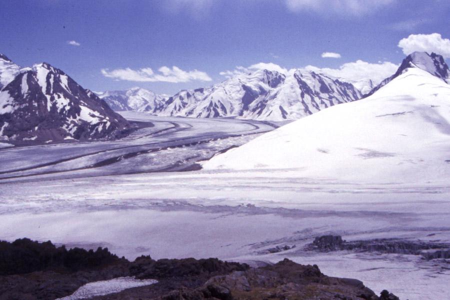 какие ледники занимают большие площади в россии
