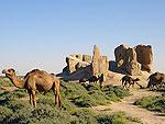 Turkmenistan Sights - Dekhistan