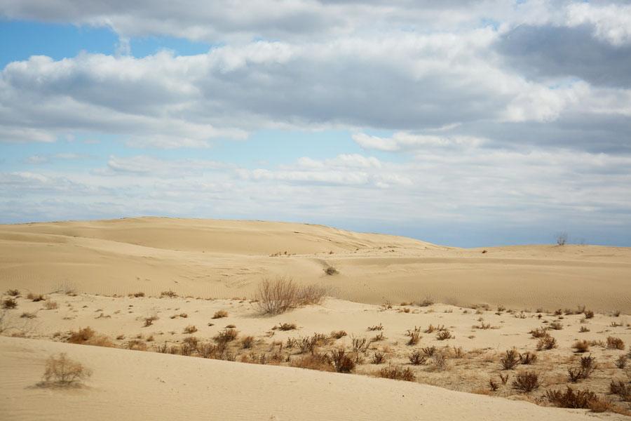 Пустыни Узбекистана Пустыня Кызылкум Узбекистан