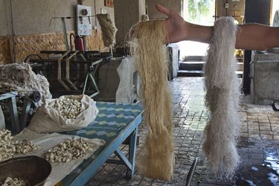 Manufacturing process in Yodgorlik Silk Factory, Margilan