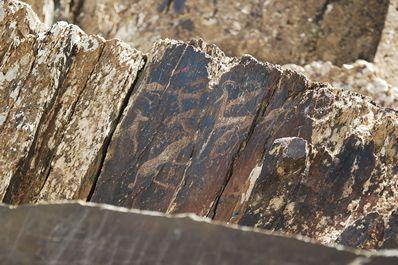 Sarmish-say Petroglyphs, Uzbekistan