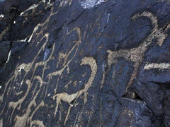 Tour to Beldersay Petroglyphs