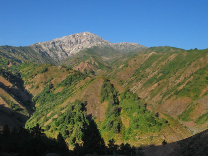Chimgan Mountains - Beldersay`s Ring: Tours in Uzbekistan