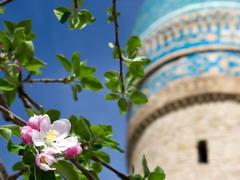 Сборный тур на Навруз 2018. Праздник весны в Узбекистане.