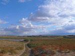 Aydarkul fields